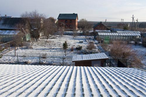 Снег_DSC_1965