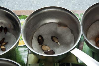 Семена огурцов_DSC_2386