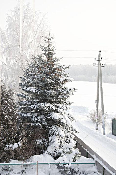 Зима_DSC_5575