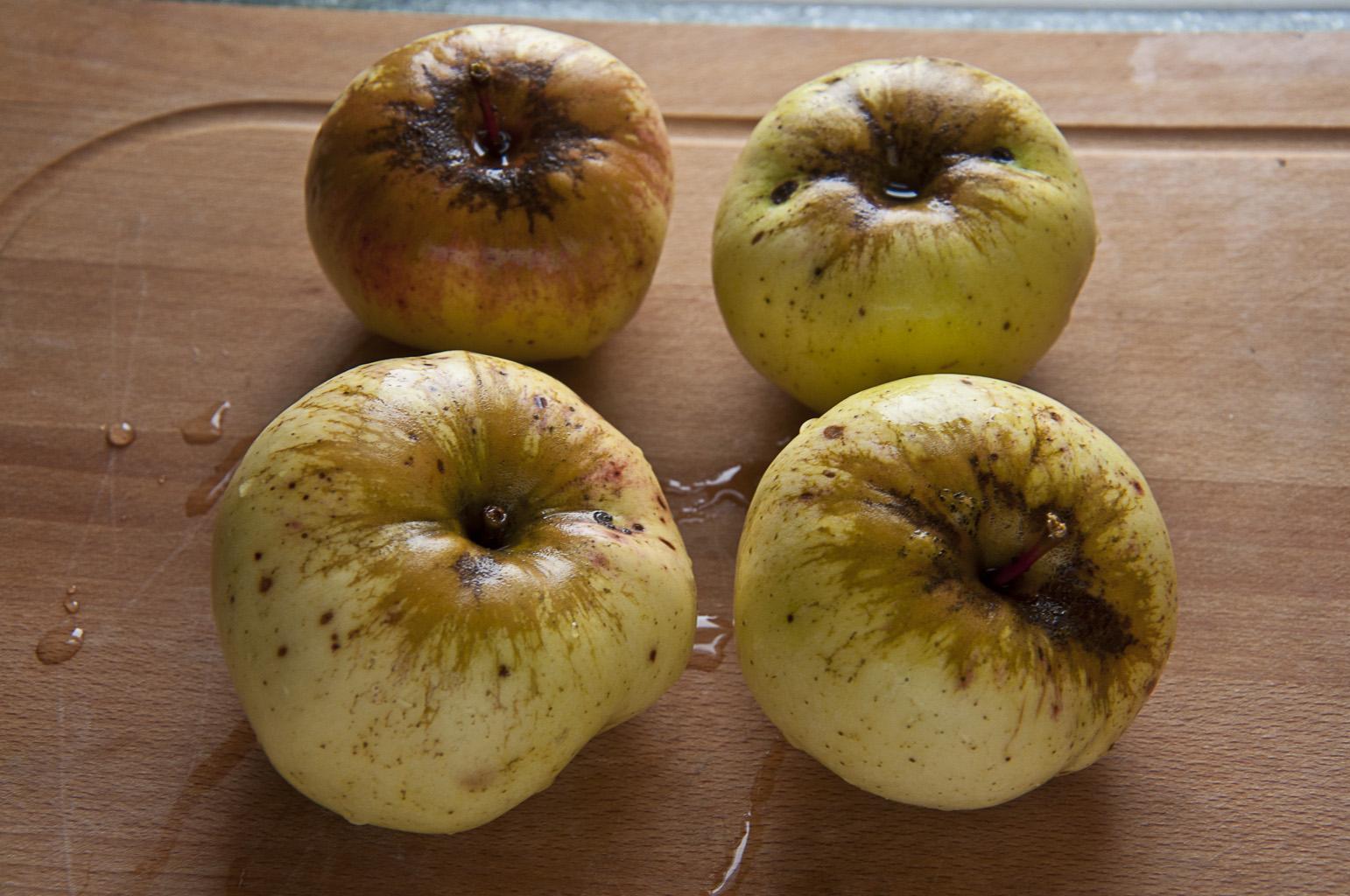 Яблочный пирог_DSC_4934