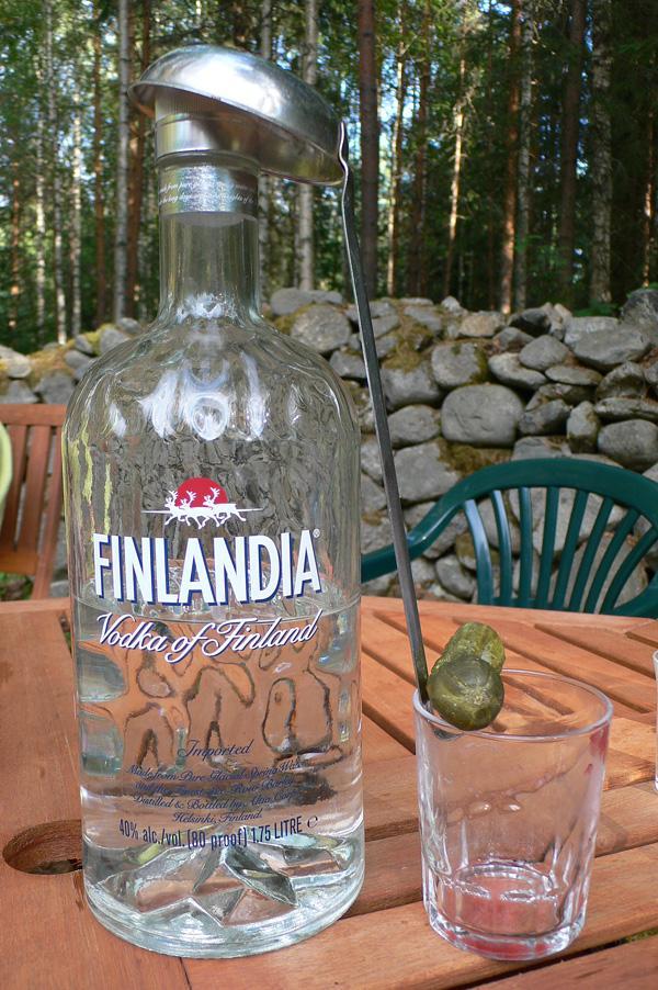 Финляндия_2006_P1000482