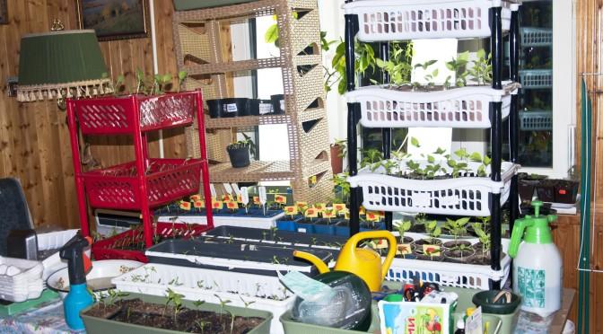 Вопрос огородникам