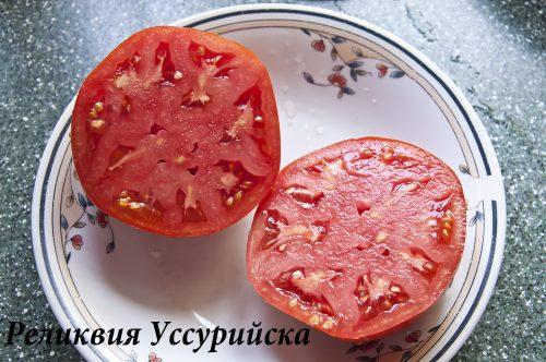 Реликвия Уссурийска_DSC_1420