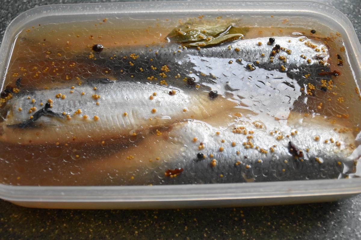 Селедка в горчичном рассоле